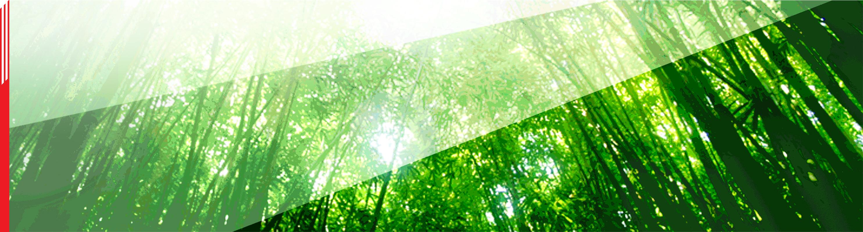 Sun hung kai forex